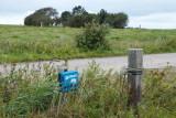 M45, Ydre Bjerrum, Ribe, IMG_6067.02-09-2011.jpg