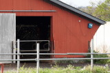 Løgumkloster, 0V4E2915 07-10-2011.jpg
