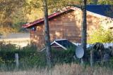 M60, Bryrup, 0V4E3626 23-10-2011.jpg