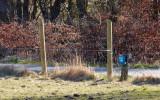 M30, Funderholme, Silkeborg, IMG_0335 24-03-2012.jpg