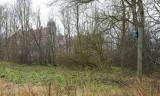 M45, Haverslev, IMG_8389 06-04-2012.jpg