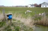 M65, Højer, IMG_8734 18-04-2012_resize.jpg