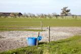 M40, Vester Vedsted, IMG_8837 19-04-2012.jpg