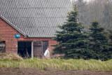Vester Vedsted, Ribe, CR6F3210 20-04-2012.jpg
