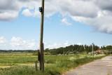 M65, M115, Farsø, IMG_9575 29-05-2012.jpg
