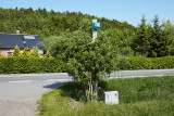 M90, Bjerringbro, IMG_0293 01-06-2013.jpg