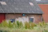 Sjørup, 0V4E4821, 20-06-2014.jpg