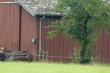 M45, Lindbjerg, CR6F0912, 27-07-2014.jpg