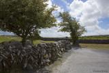 Die typischen Steinmauern