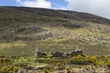 Ruinen in den Wicklow Mountains
