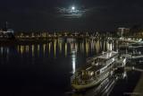 Die Flotte der Elbdampfer von der Augustusbrücke aus
