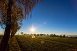 Sonnenaufgang bei Sachsenhausen