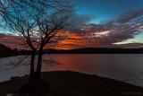 Sonnenaufgang beim Taucherbaum
