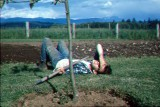 1964 Johnny resting