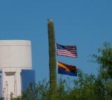Saguaro Flagpole