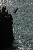 2013-05-18 - Waimea Bay