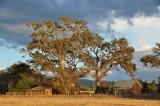 Backroads of Southern Santa Clara County