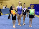 SW SCHOOLS COMP SHEBOURNE MARCH 2015