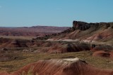 National Petrified Forest