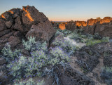 purple sage sunset