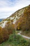 Camino de la cueva de La Verna