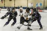 Woodbridge Senior High School Hockey vs Haymarket