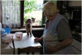 Lies en haar 13 jaar oude kat