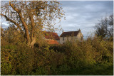 pasture and farmer`s house