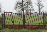 GALLERY hekken in Limburg -pasture gates