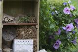 Insectenhotel bij mijn observatiehutje