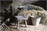 In de koeienstal bij Lies