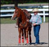 Blainville reining 2013