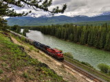 Canadian Pacific grain train along Bow River