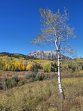 On the way to Kebler Pass