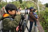動物園小小攝影師