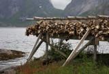 Northern Norway2009_12.jpg