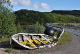 Northern Norway2009_43.jpg