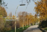 Colours of Fall along the Danube Canal in Vienna