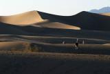 Death Valley NP 6.jpg