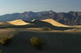 Death Valley NP 7.jpg