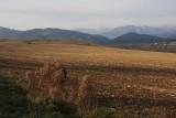 Slovakian Landscape 11
