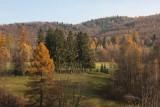 Slovakian Landscape 8