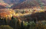 Slovakia Autumn4