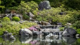 Jardin japonais_Japanese garden