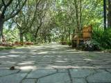 Entrée du jardin_Garden entry