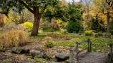 Jardin d'automne_Autumn garden