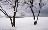 Jour de frimas_Day of frost