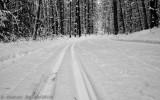 Sentier de ski de fond_Cross-Country ski trail