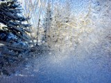 Frosted Frame