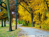 Matthiessen State Park 11-2013 003.jpg